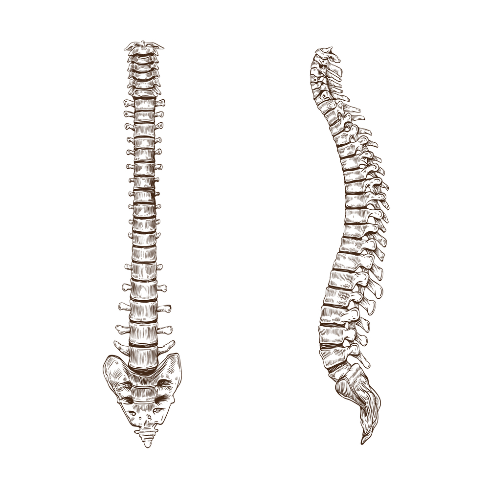spinal decompression, How Many Sessions of Spinal Decompression Do You Need?